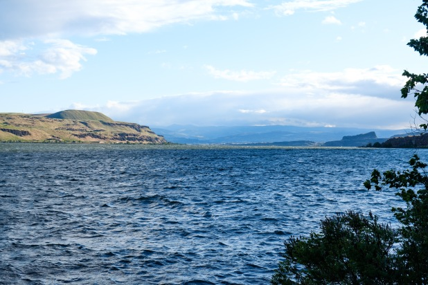 My Campsite at the Dalles on the Columbia river.