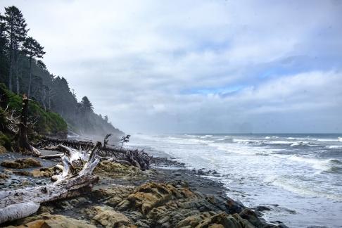 Kalaloch beach on the Olympic Peninsula coast.