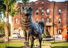 Statue of dog