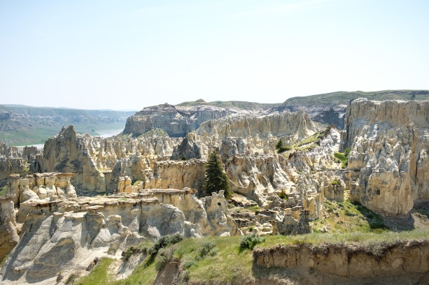 View of White Cliffs