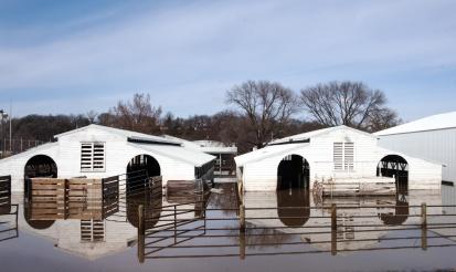 Flooded Wahington County Fair livestock buildings.