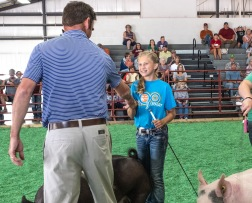 Judge Jim Gibson congratulates Laney Hoier on showing the Grand Champion Market Hog in the WC Fair Hog Show Tuesday.