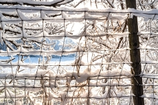 Snow covered fence at the edge of Black Elk-Neihardt Park