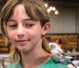 Madyson Mildward with her parakeet Sgt. Tibbs following the Companion Animal show.