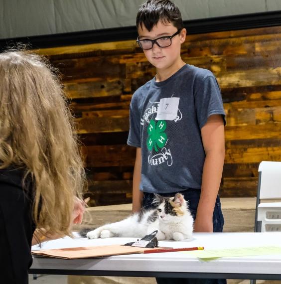 Zadyn Lambert exhibits his cat Katniss during the Cat Show.