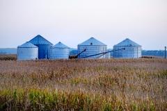 Grain bins and corn field alon the California Bend trail.